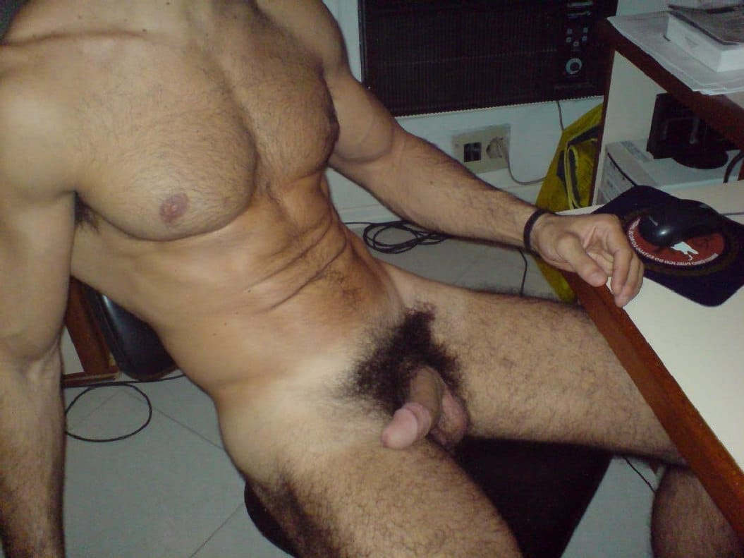 hairy men swinging cocks blog